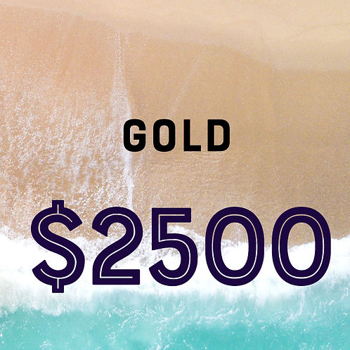 2020 Gold Sponsor