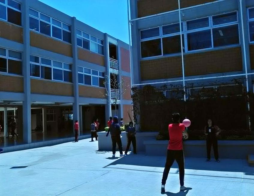 Colegio Magno 7