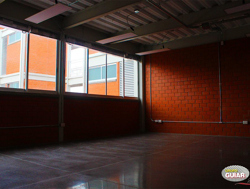 Universidad Magno 12