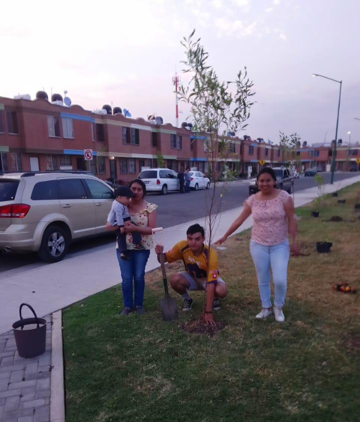 Reforestación_7