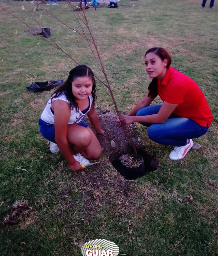 Reforestación_14