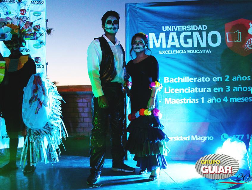Magno DM 44