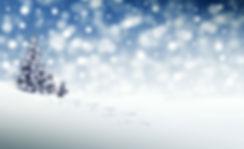 christmas-3864552_1920.jpg