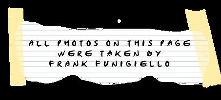 FRANKS LOOKBOOK DESCRIPTION.png