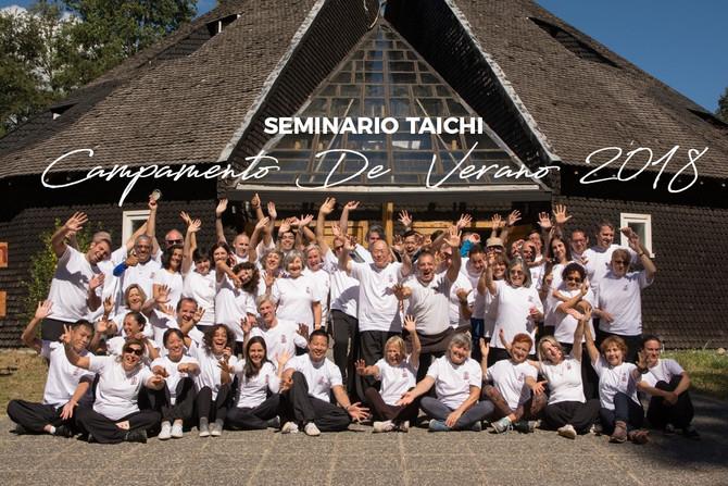 Seminario Taichi Campamento de Verano 2018 Curarrehue