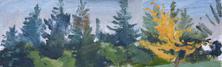 Devon Trees II