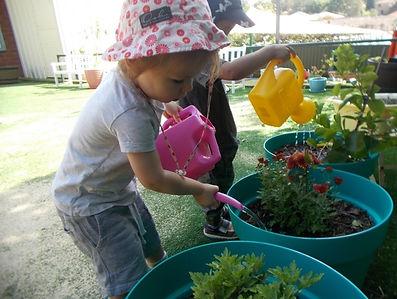 caring for the garden.jpg