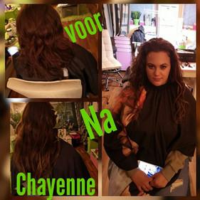 Chayenne P 1.jpg