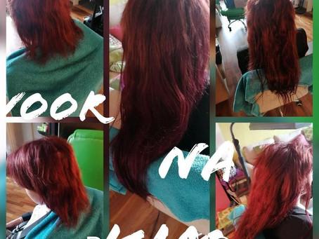 rode haren -donderstralen