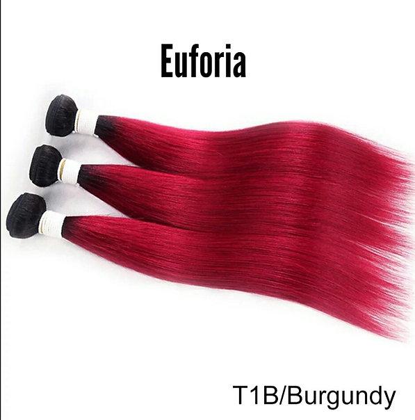 Euforia Ombre T1B en Burgundy.jpg
