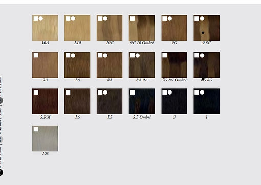 Balmain kleuren Fill inn Extensions.jpg