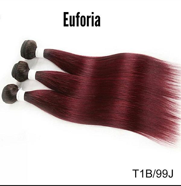 Euforia Ombre T1B met 99 J.jpg