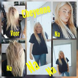 chayenne voor en na 1.jpg
