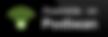 Screen Shot 2020-02-21 at 6.24.37 PM.png