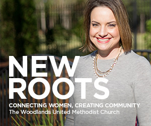 New Roots Web Banner