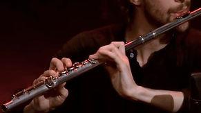 flute trav.jpg