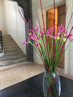 Bouquet d'accueil domaine de Biar