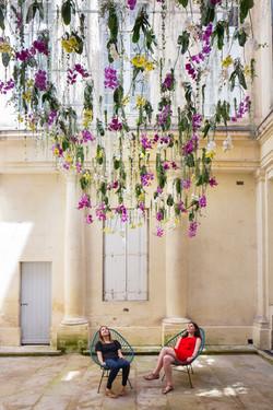 Greenovation orchidées