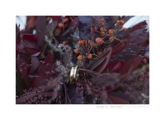 Mariage automne (22).jpg
