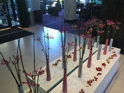 evenement fleuriste montpellier
