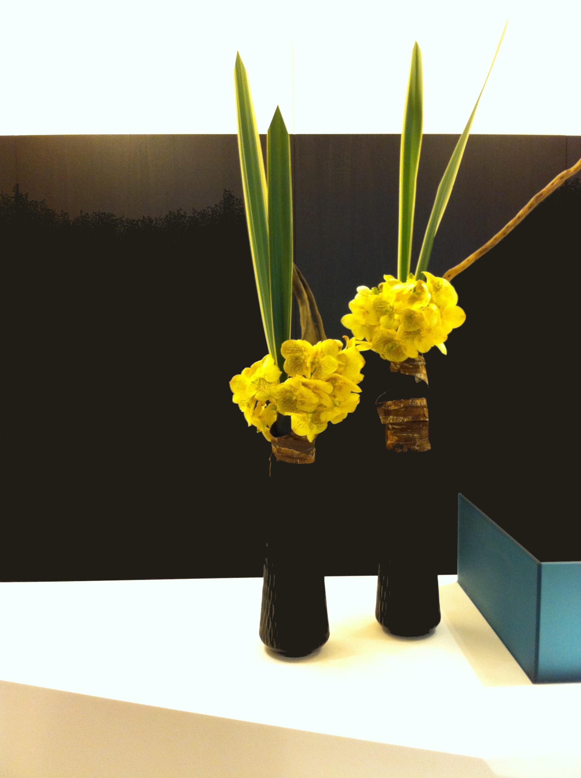 design floral montpellier