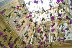 plafond d'orchidées