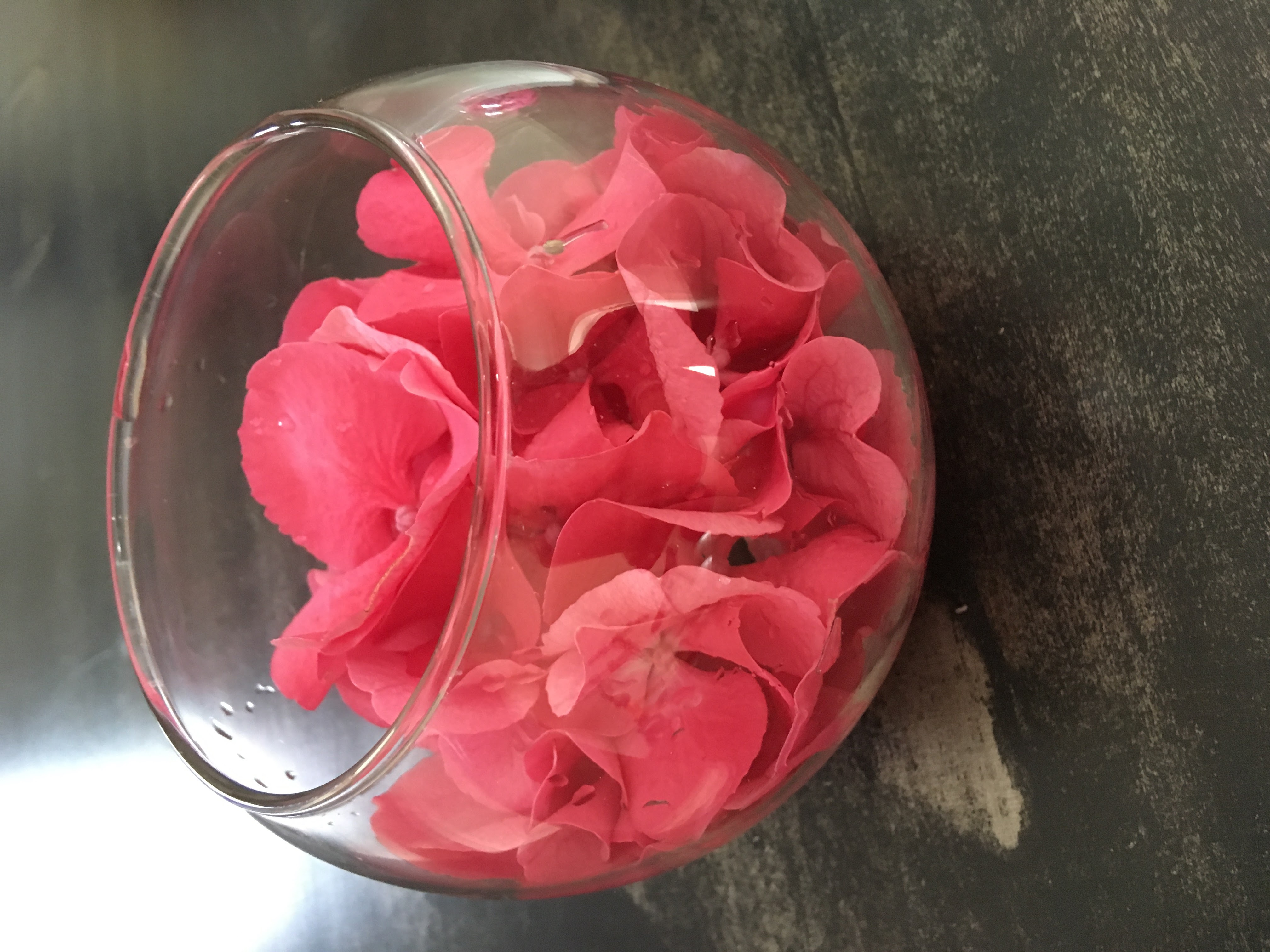 hortensias fleuriste montpellier