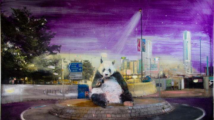 Panda in Honkers
