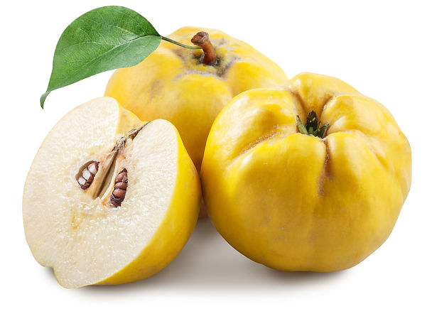 Quince fruit image.jpeg