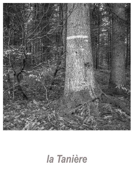 la Tanière 1.3w.jpg