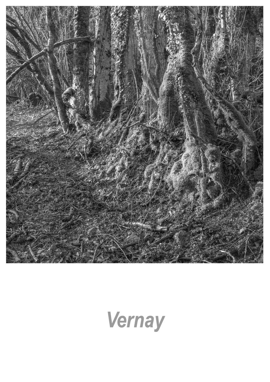 Vernay 1.5w.jpg