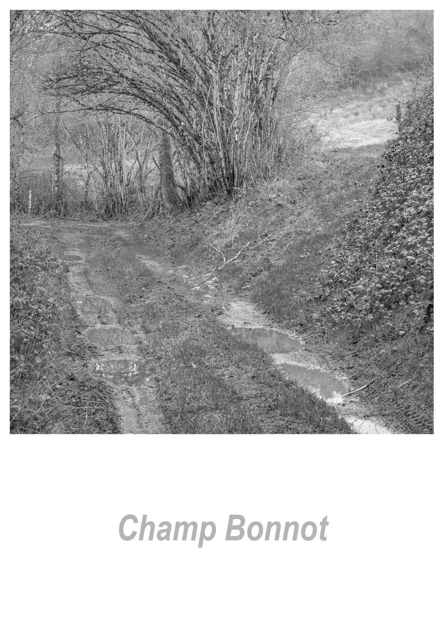 Champ Bonnot 1.6w.jpg