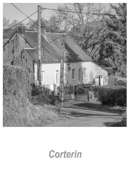 Corterin 1.4w.jpg