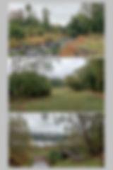 Planche 27.11w.jpg
