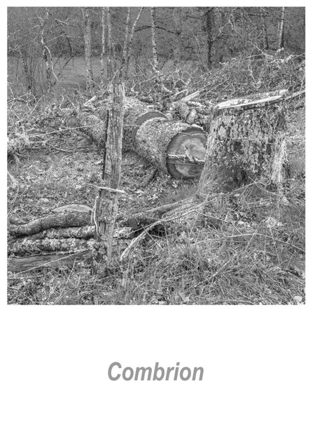 Combrion 1.6w.jpg
