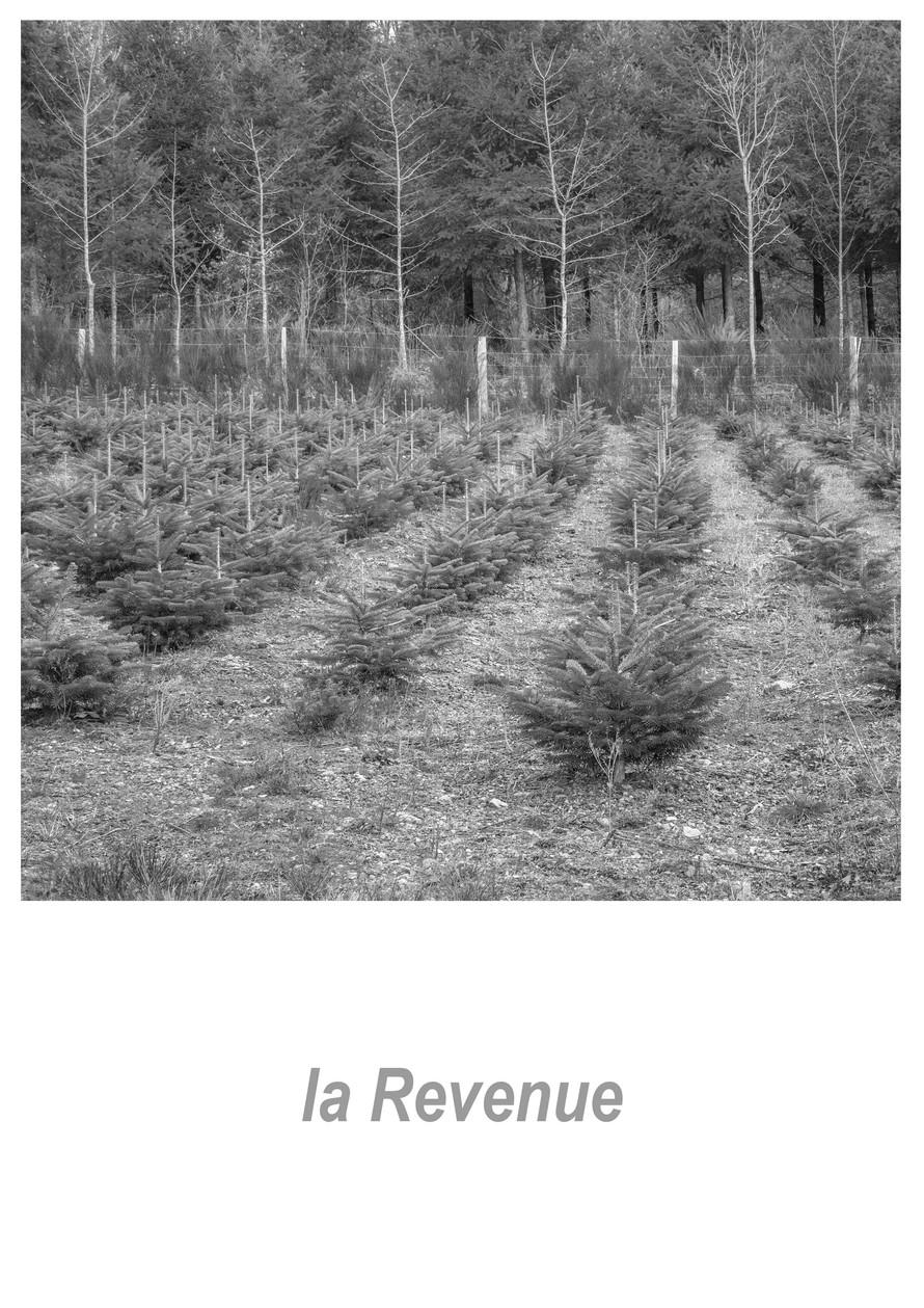 la Revenue 1.6w.jpg