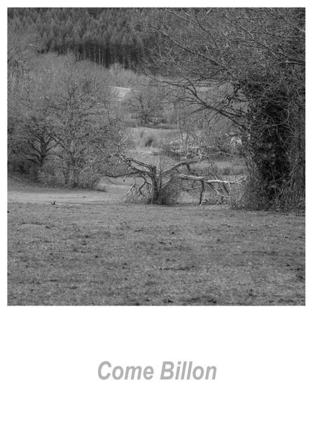 Come Billon 1.3w.jpg