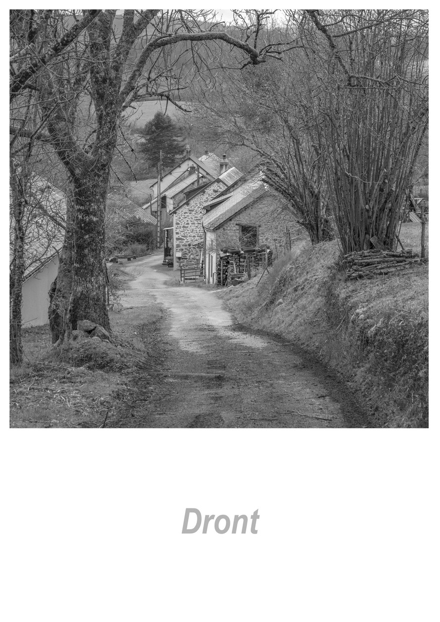 Dront 1.17w.jpg