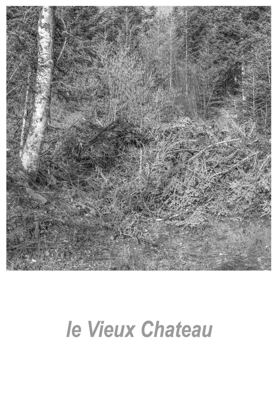 le Vieux Chateau 1.1w.jpg