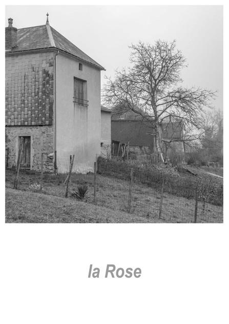 la Rose 1.5w.jpg
