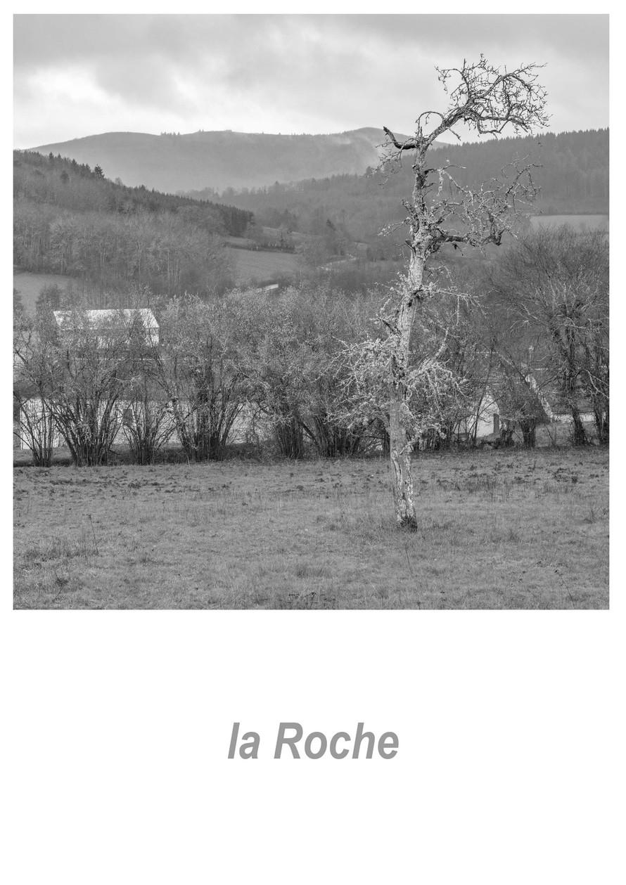 la Roche 1.7w.jpg