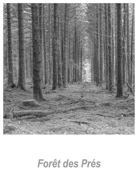 Forêt des Prés 1.1w.jpg