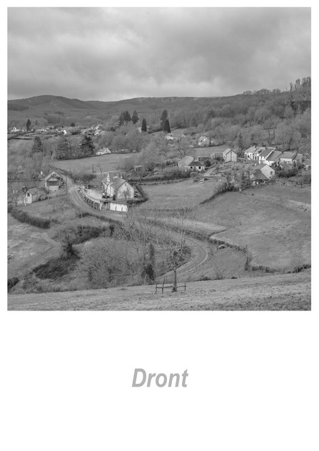 Dront 1.18w.jpg