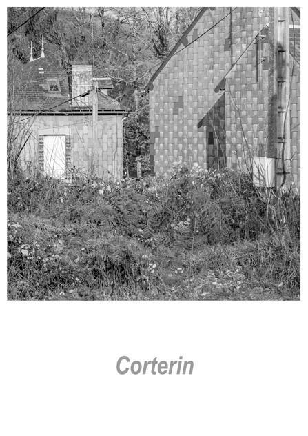 Corterin 1.3w.jpg