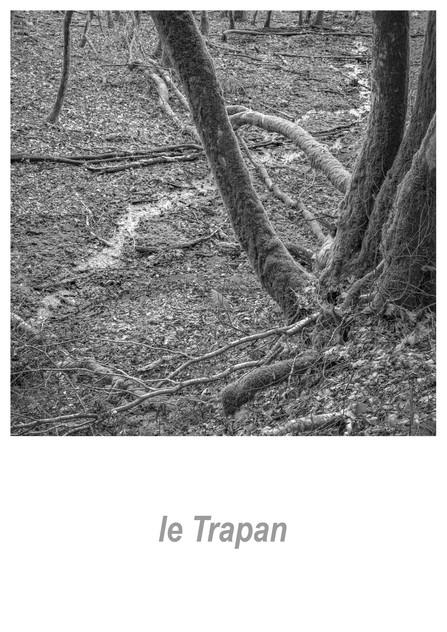 le Trapan 1.2w.jpg