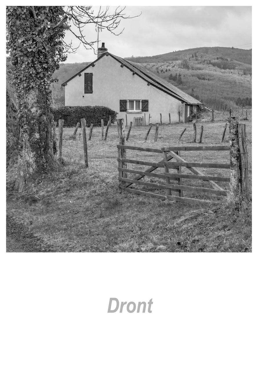 Dront 1.3w.jpg