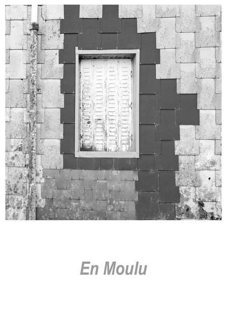 En Moulu 1.7w.jpg