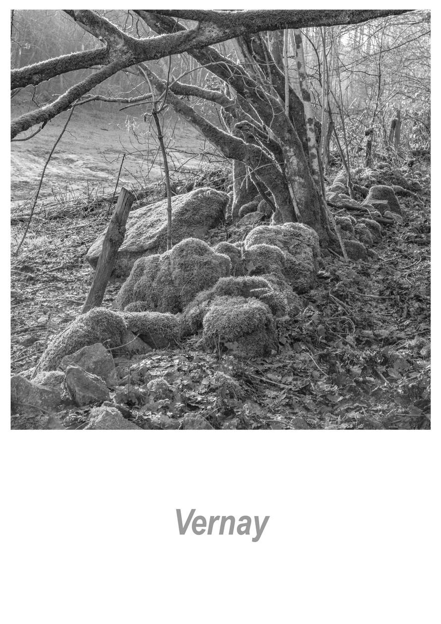 Vernay 1.6w.jpg