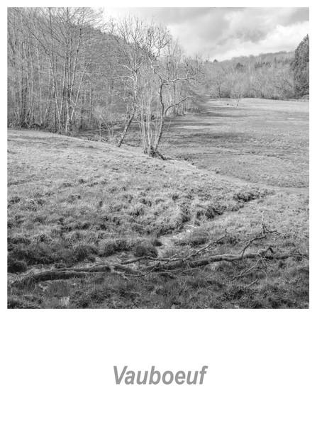 Vauboeuf 1.3w.jpg