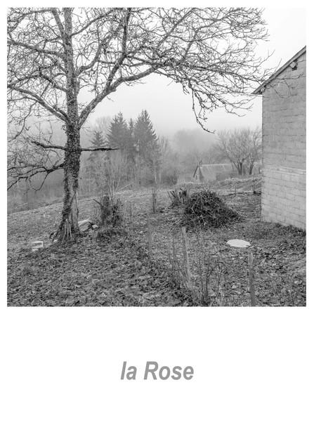 la Rose 1.1w.jpg